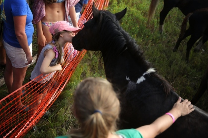 CHINCOTEAGUE, VA - JULY 29:  Seven-year-old Carlin Makibbin of Ocean City, Maryland, kisses a wild pony after ponies swam across the Assateague Channel during the annual pony swim event from Assateague Island to Chincoteague on July 29, 2015 in Chincoteague, Virginia. After crossing from the national wildlife refuge, some ponies are auctioned off by the Chincoteague Volunteer Fire Company during the 90th annual event.  (Photo by Alex Wong/Getty Images)