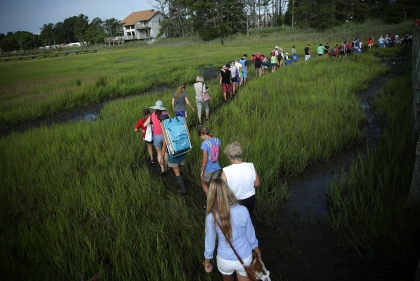 CHINCOTEAGUE, VA - JULY 29:  People leave as they walk in the marsh after they watched wild ponies swimming across the Assateague Channel during the annual pony swim event from Assateague Island to Chincoteague on July 29, 2015 in Chincoteague, Virginia. After crossing from the national wildlife refuge, some ponies are auctioned off by the Chincoteague Volunteer Fire Company during the 90th annual event.  (Photo by Alex Wong/Getty Images)